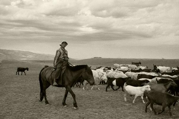 Luís Barreira  na terra de ninguém - estepe mongol  Mongólia, 1996  Fotografia  Gelatin Silver print  arquivo:F_232_13042, 1996