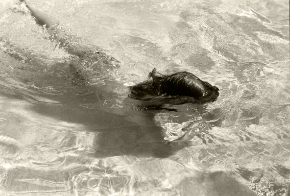 Luís Barreira  Rita Barreira na piscina do avô (II), 2000  Fotografia  Gelatin Silver print