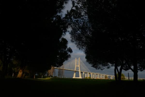 Luís Barreira  Ponte Vasco da Gama, 2017  Fotografia  Série: no parque  arquivo:03_15099, 2017