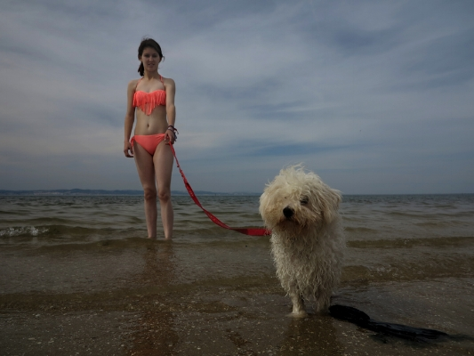 Luís Barreira  Dog on the beach, 2015  Samouco  Fotografia  Série:   street photography    arquivo: 04_3248, 2015