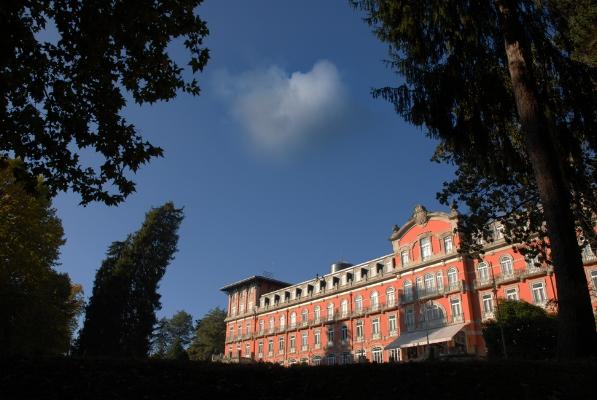 """Luís Barreira  Palace Hotel de Vidago, 2011  Fotografia  série: """"quando estas árvores se desnudam descobrem as minhas raízes""""   arquivo:10_0130, 2011"""