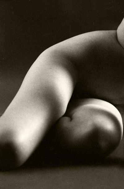 Luís Barreira  Nu, 1999  Fotografia  Gelatin Silver print  paper (110x70 cm)  arquivo:F_459_801B, 1999