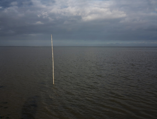 """Luís Barreira  """"Mar da palha"""", 2012  Fotografia  série: no parque  arquivo:12_1304, 2012"""