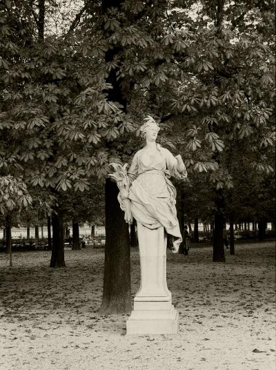 Luís Barreira   j  ardin des tuileries , 1989  Paris  Fotografia  Gelatin Silver print  arquivo: F_064_6005, 1989