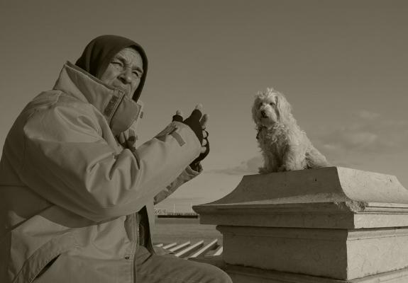 Luís Barreira  velho e o cão, 2015  Lisboa  Fotografia  serie:  street photography   arquivo:02_08_IMG_2648, 2015