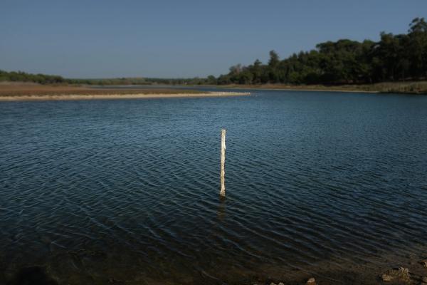 Luís Barreira  Lagoa da Albufeira, 17  série:  Fotografia  arquivo:10_15_DSCF2853, 2017