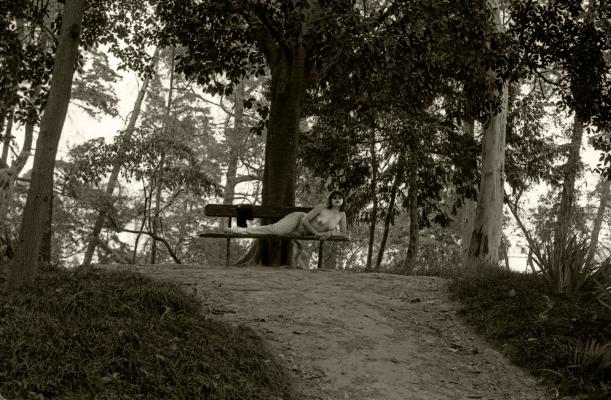 """Luís Barreira  """"sei-os de cor"""", 1992  Jardim Botânico, Lisboa  Série:  Fotografia  Gelatin Silver print  arquivo:FOLIO_139_10339, 1992"""