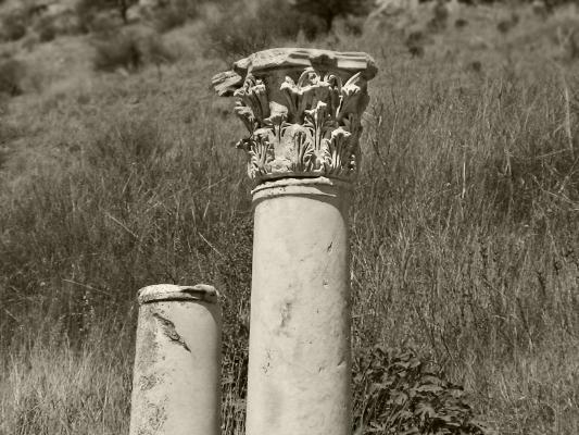 Luís Barreira  Éfeso, 2005  série: antiguidade clássica  Fotografia  arquivo:2005_08_14_DSC01140