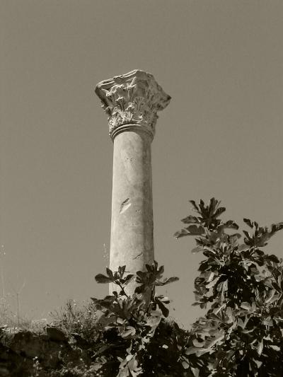 Luís Barreira  Coluna coríntia em Éfeso, 2005  série: antiguidade clássica  Fotografia  arquivo:2005_08_14_DSC01142