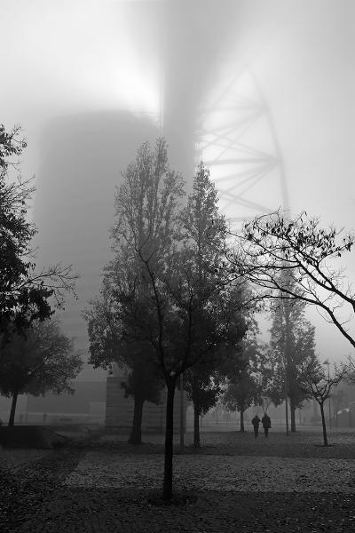 Luís Barreira  Torre Vasco da Gama, 2018  série: no parque  Fotografia  arquivo: 2018_12_05_DSCF1104
