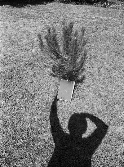 Luís Carvalho Barreira  Eclipse Solar (11 de Agosto de 1999 - 10:51 horas)  Vidago  Fotografia  arquivo: F_474_19236, 1999
