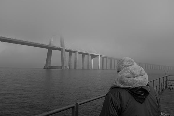 Luís Barreira  ponte, 2019  série: no parque  Fotografia  arquivo: 2019_01_03_DSCF1550