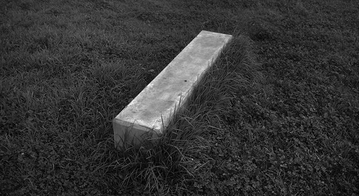 Luís Barreira  Bloco , 2019  série: no parque  Fotografia  arquivo: 2019_01_15_DSCF1599