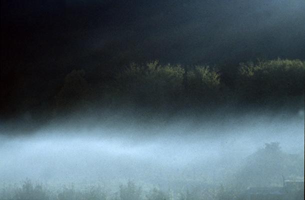 """Luís Barreira  Vidago, 1985  série: """" quando estas árvores se desnudam descobrem as minhas raízes """"  Fotografia  Diapositivo  arquivo: 1985_SLIDE_21607"""