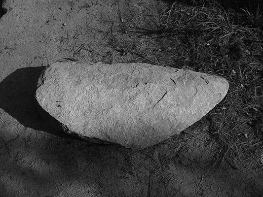Luís Barreira  calhau, 2019  série:  ars natura   Fotografia  arquivo: 2019_02_24_IMG_0561