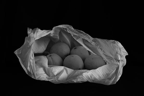 Luís Barreira   oranges inside the bag , 2019  série:   Still Life    Fotografia  arquivo: 2019_06_17_NK2_5053