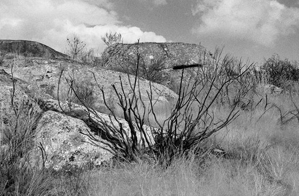 Luís Carvalho Barreira  serra, 1999  série:  Fotografia  Gelatin Silver print  arquivo: 1999_FOLIO_474_19223  câmara: Nikon FM2