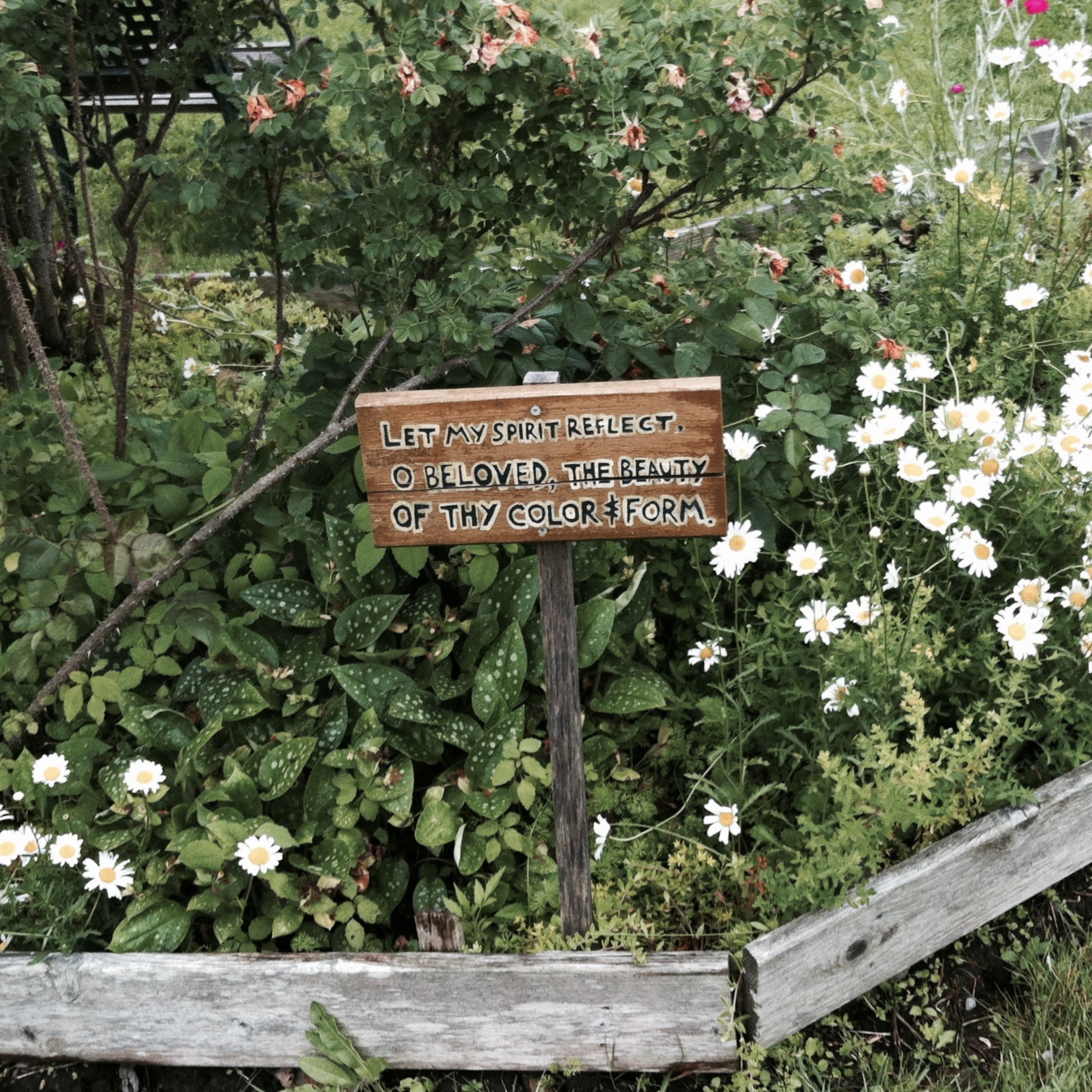 A quote from Hazrat Inayat Khan's Nature Meditations in the garden of the Abode. — N.M-Y. '15