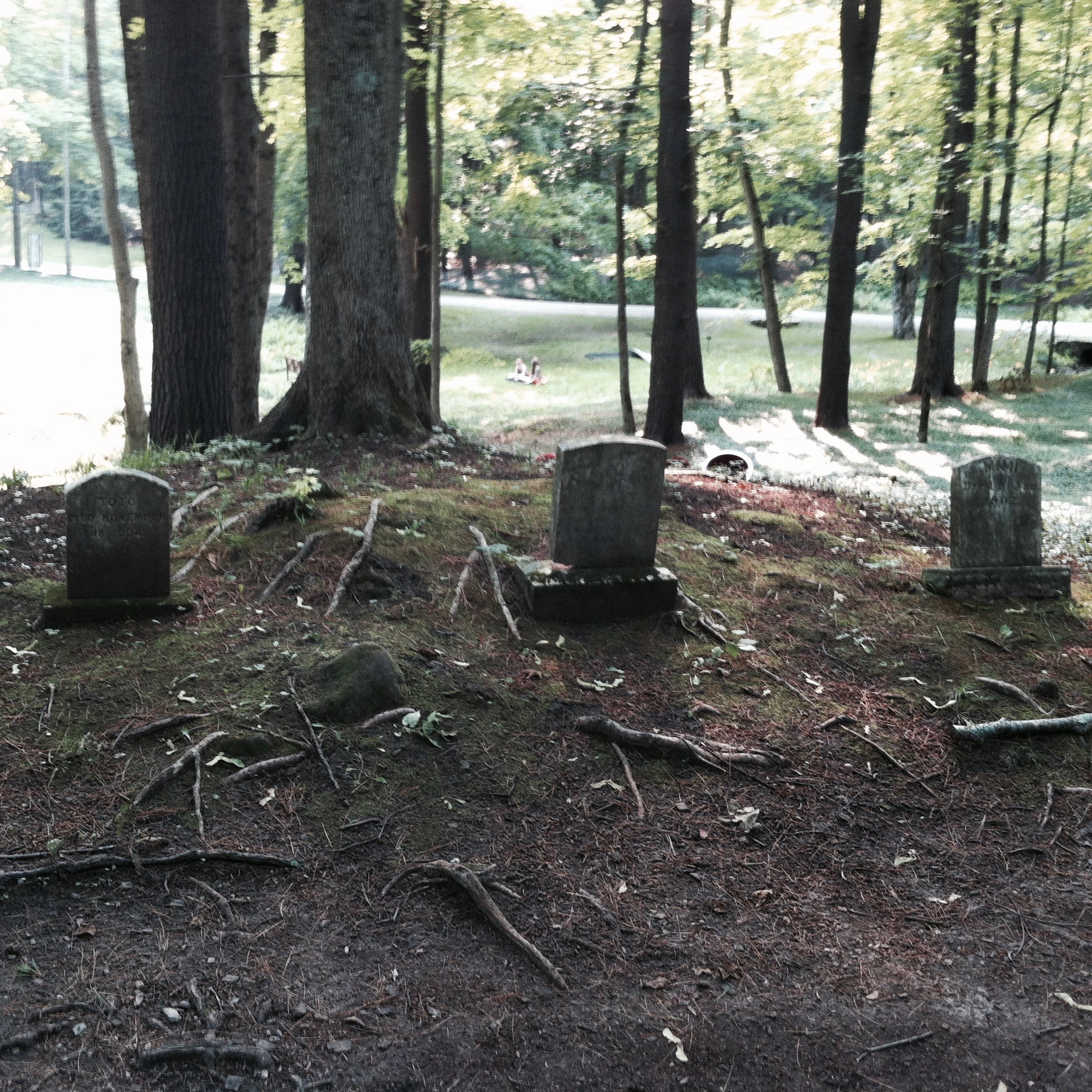 On the far left, the tombstone of Toto, who died November 18th, 1904. — N.M-Y. '15