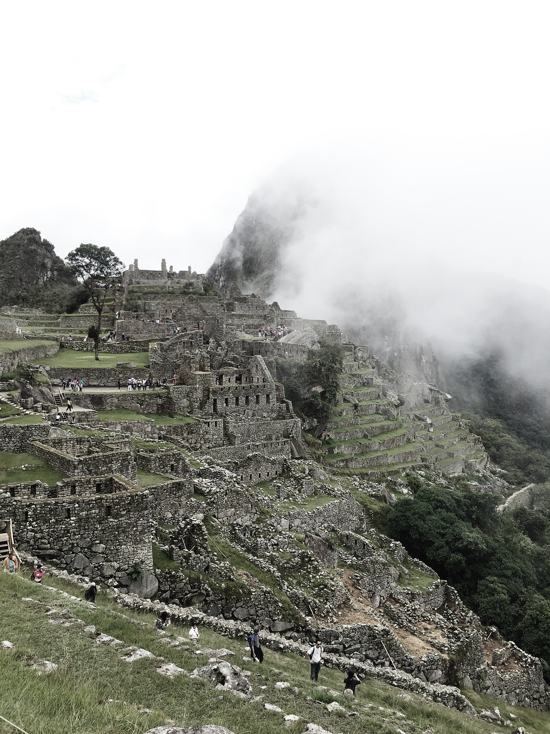 Our first sighting of Machu Picchu. We arrived at 9:00AM with fog and a little rain.