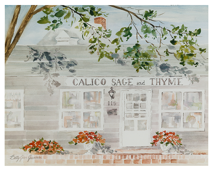 calico-sage-thyme-bowling-green-ohio-watercolor