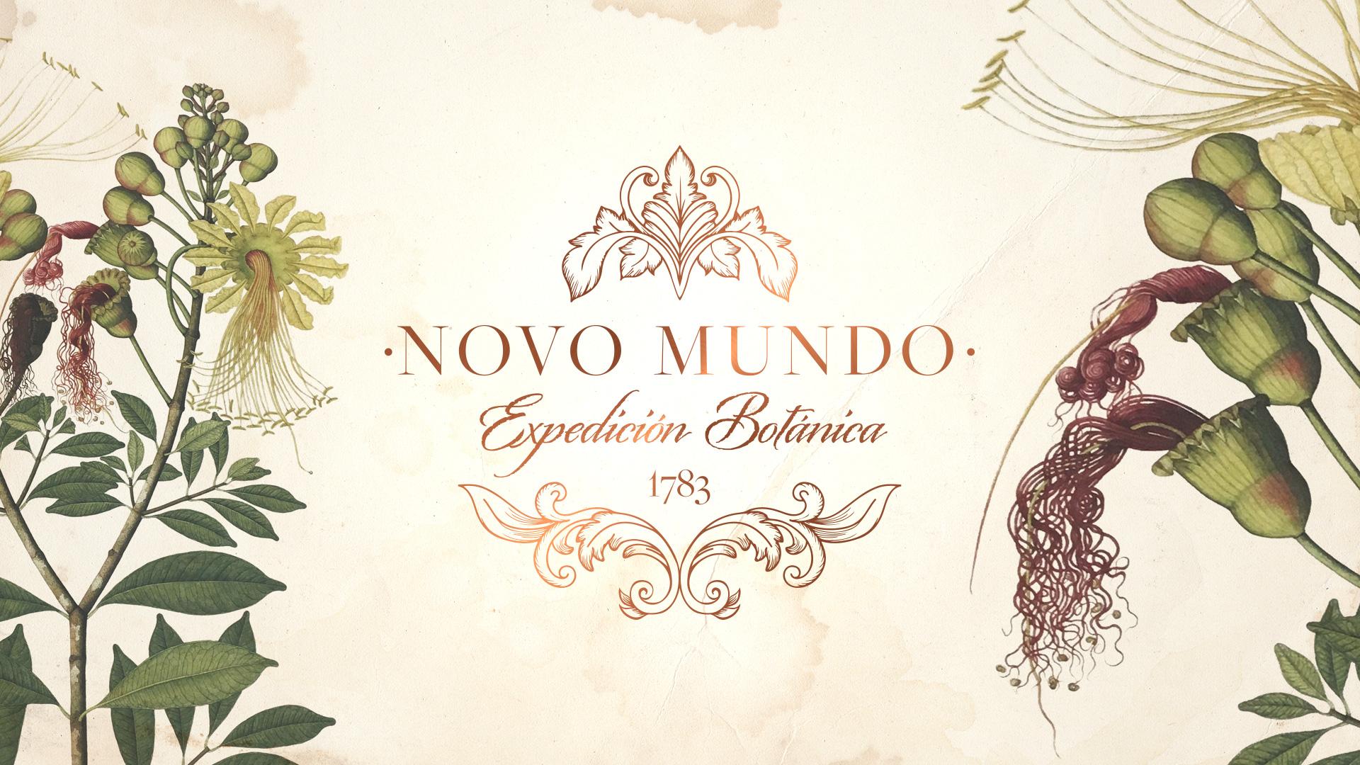 Novo-Mundo-Mockup01.jpg