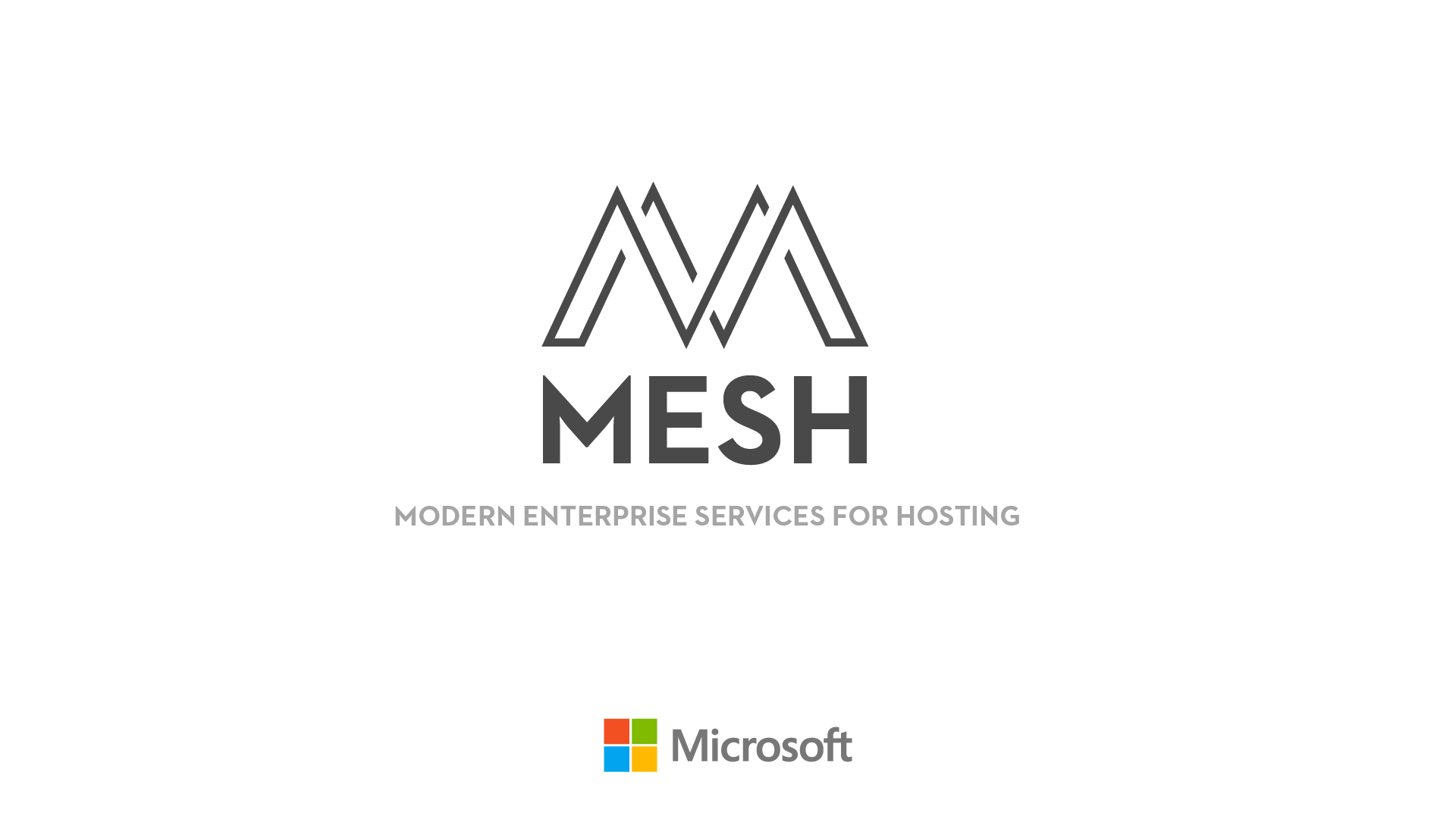 mesh01a.jpg