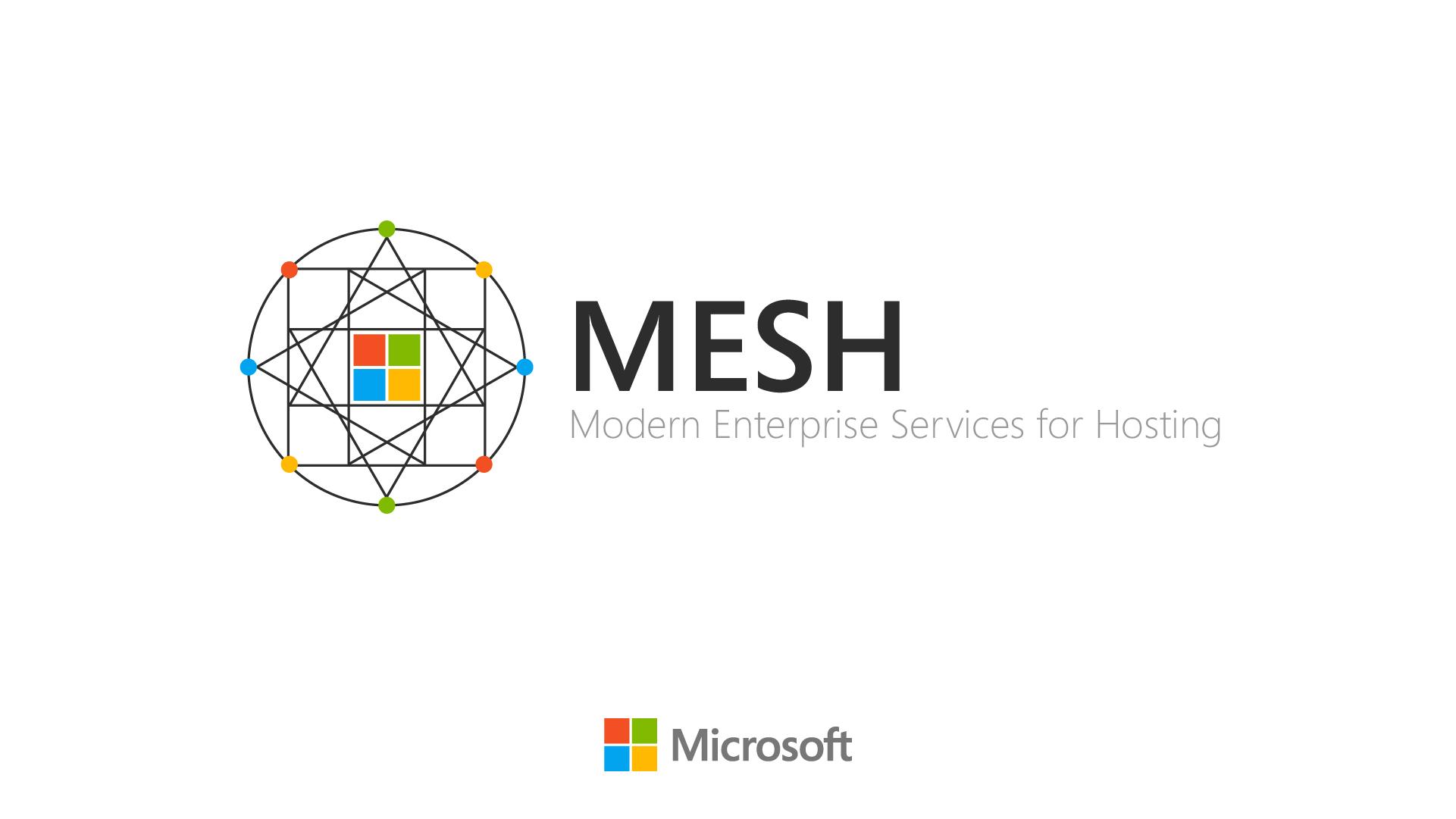 mesh02a.jpg