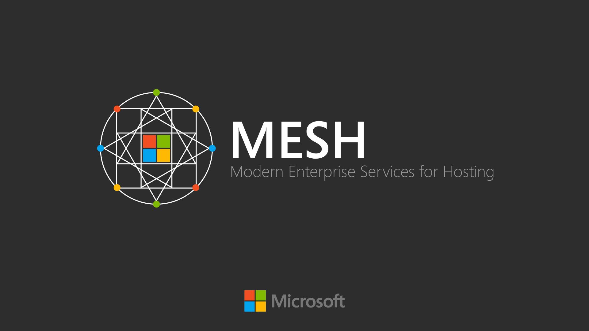 mesh02b.jpg