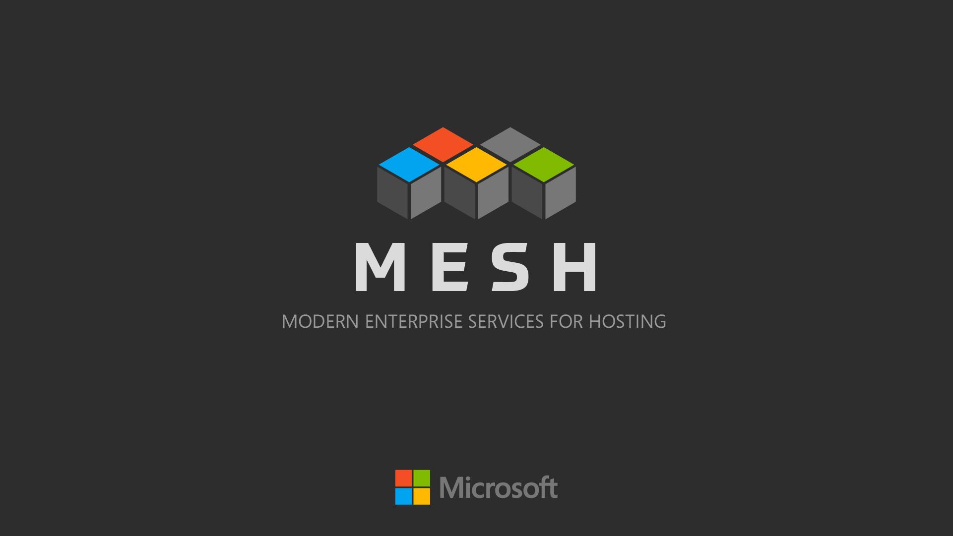 mesh04b.jpg