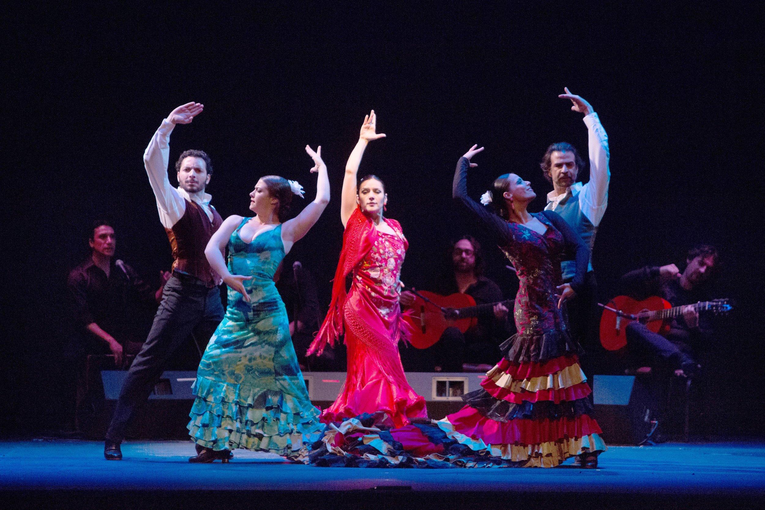 flamenco01.jpg