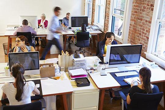 web links team.jpg