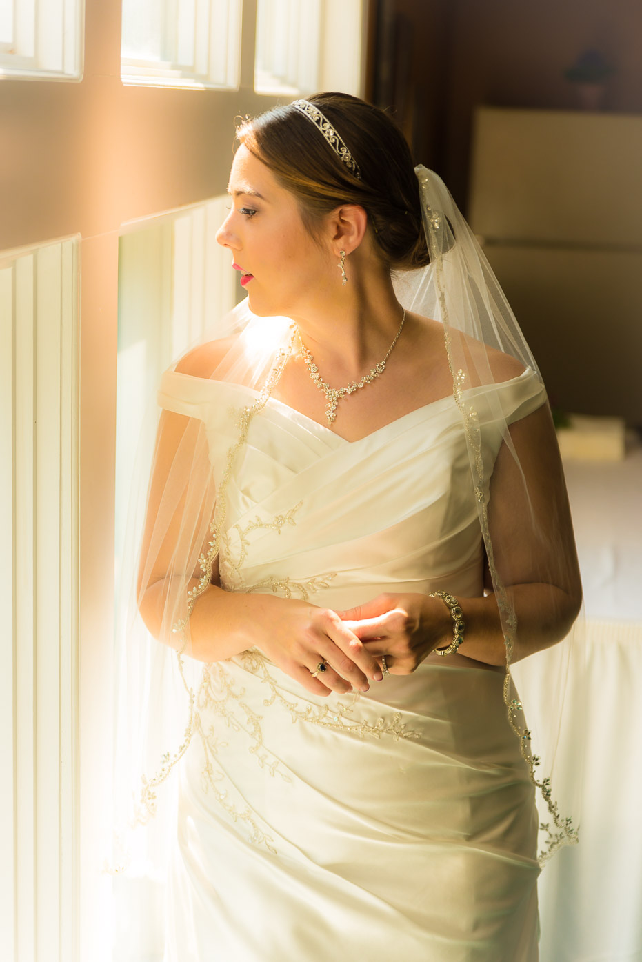 Bride Staring out the Window in Dress and Veil