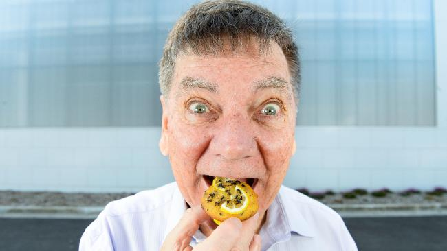 Knox mayor Peter Lockwood tucks into a lemon ant muffin ahead of the Stringybark Festival. Picture: Martin Reddy   CLICK IMAGE to go to article