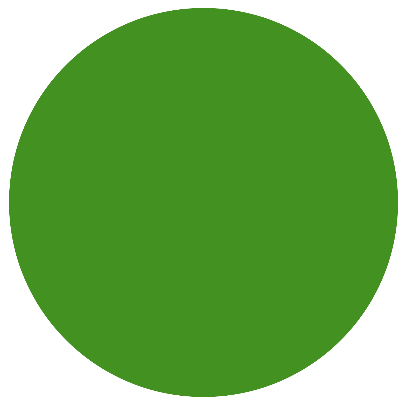 youth-health-education-logo-six-circles-07.png