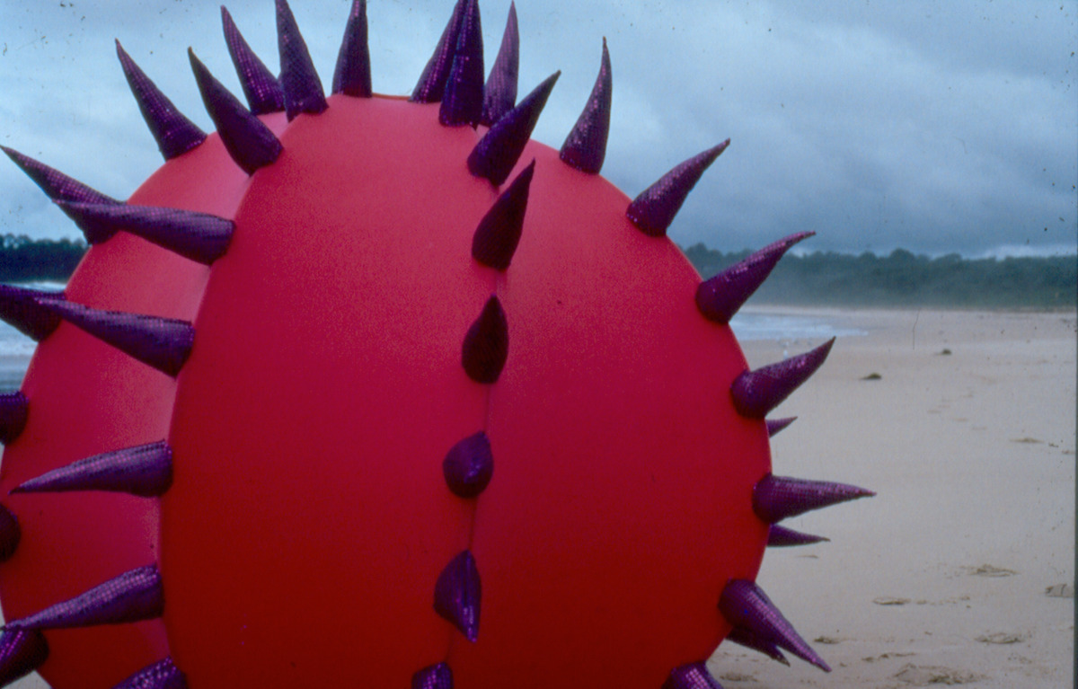 Urchin detail II 1997