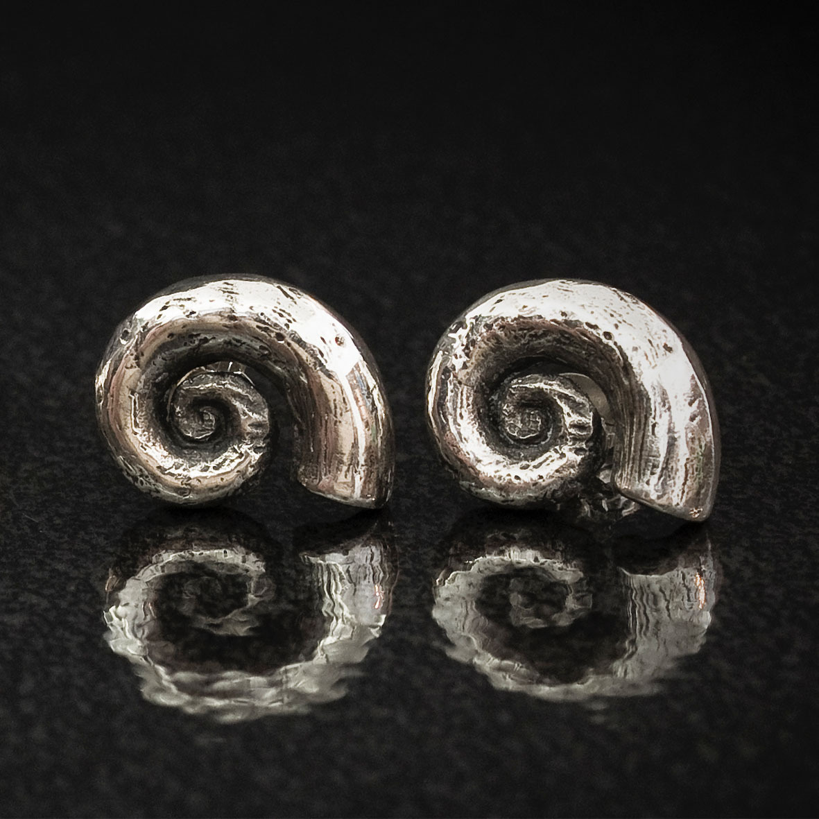 Spirula Shell Earrings