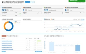 Traffic Increase from SEO Updates