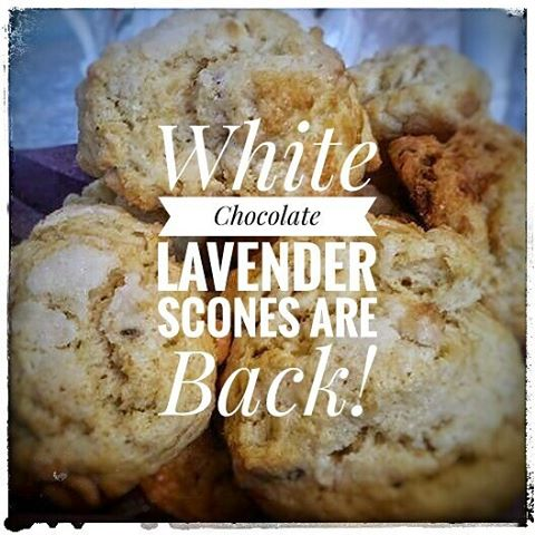 Back by popular demand.... White Chocolate Lavender Scones! If you haven't tried them, stop by and see what you're missing.  Also through the end of September mention this post and get a FREE SCONE to go with a dine in purchase of a full priced Royal High Tea. #twoatea #scones #white chocolate #lavender #delicious #free scone
