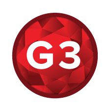 KatieJanik_Garnet3_Color_Icon_LG_WEB_FINAL.jpg
