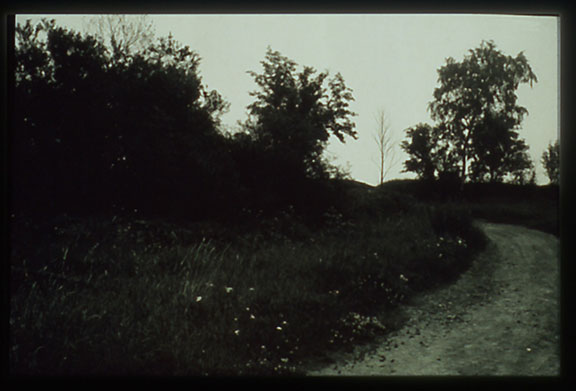 Landscape-6.jpg