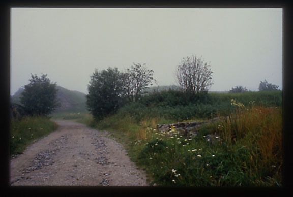 Landscape-8.jpg