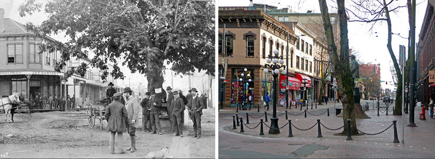 Image above: Maple Tree Square in 1886 (left) and in 2014 (right).