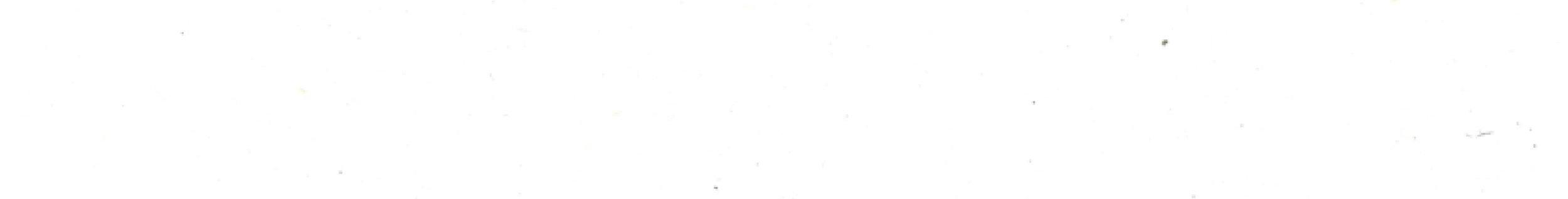 viviana-Troya-blank3.jpg