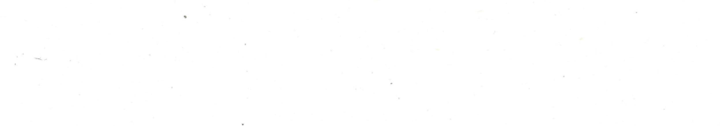 viviana-Troya-blank.jpg