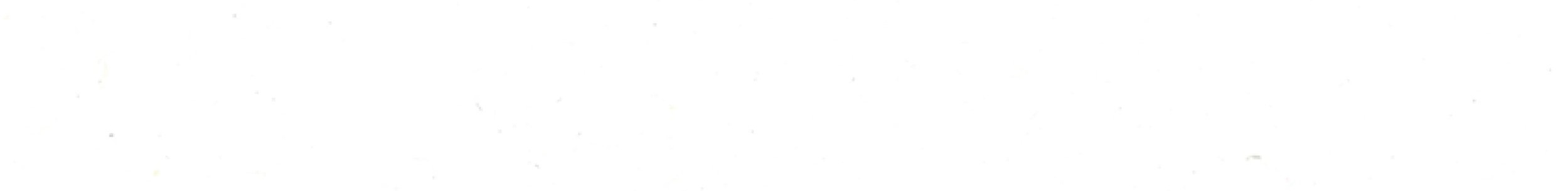 viviana-Troya-blank2.jpg