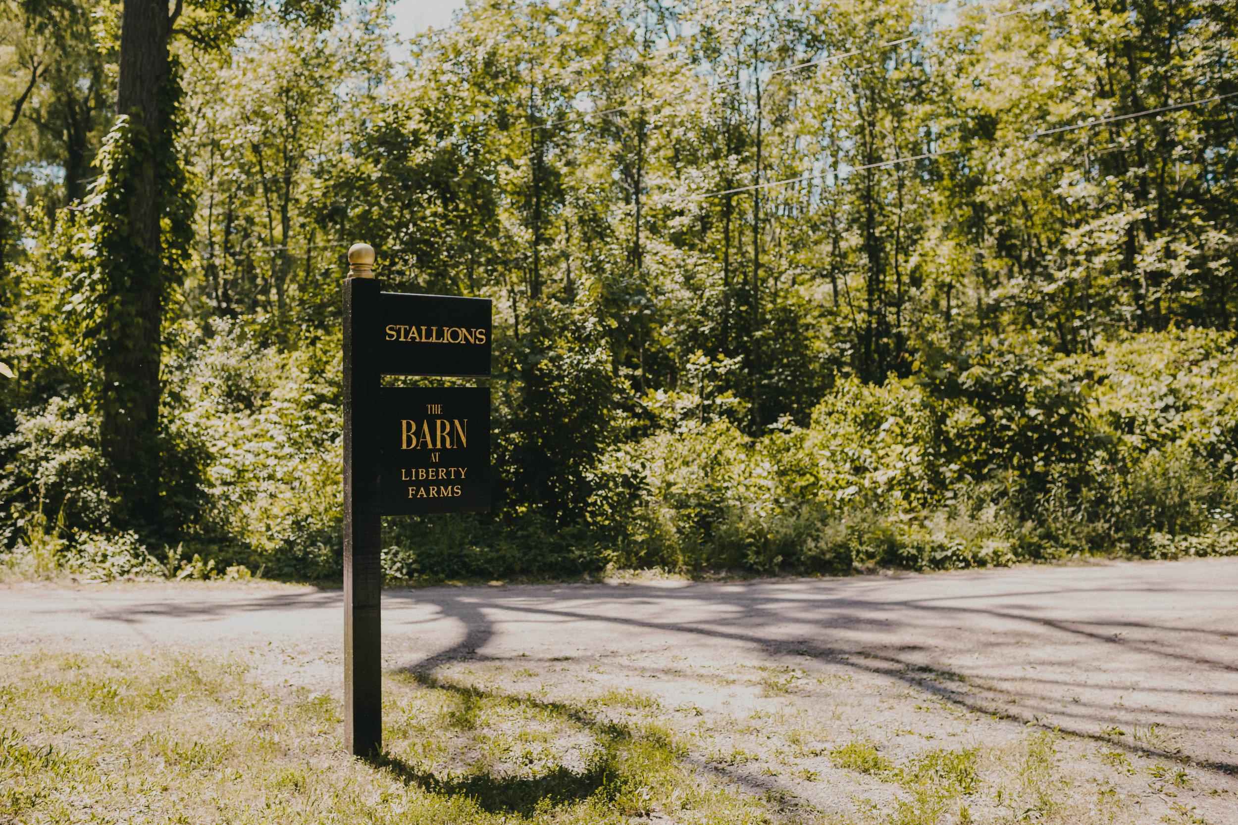777-20180616-Amanda_Brett_Catskills_Summer_Boho_Wedding.jpg
