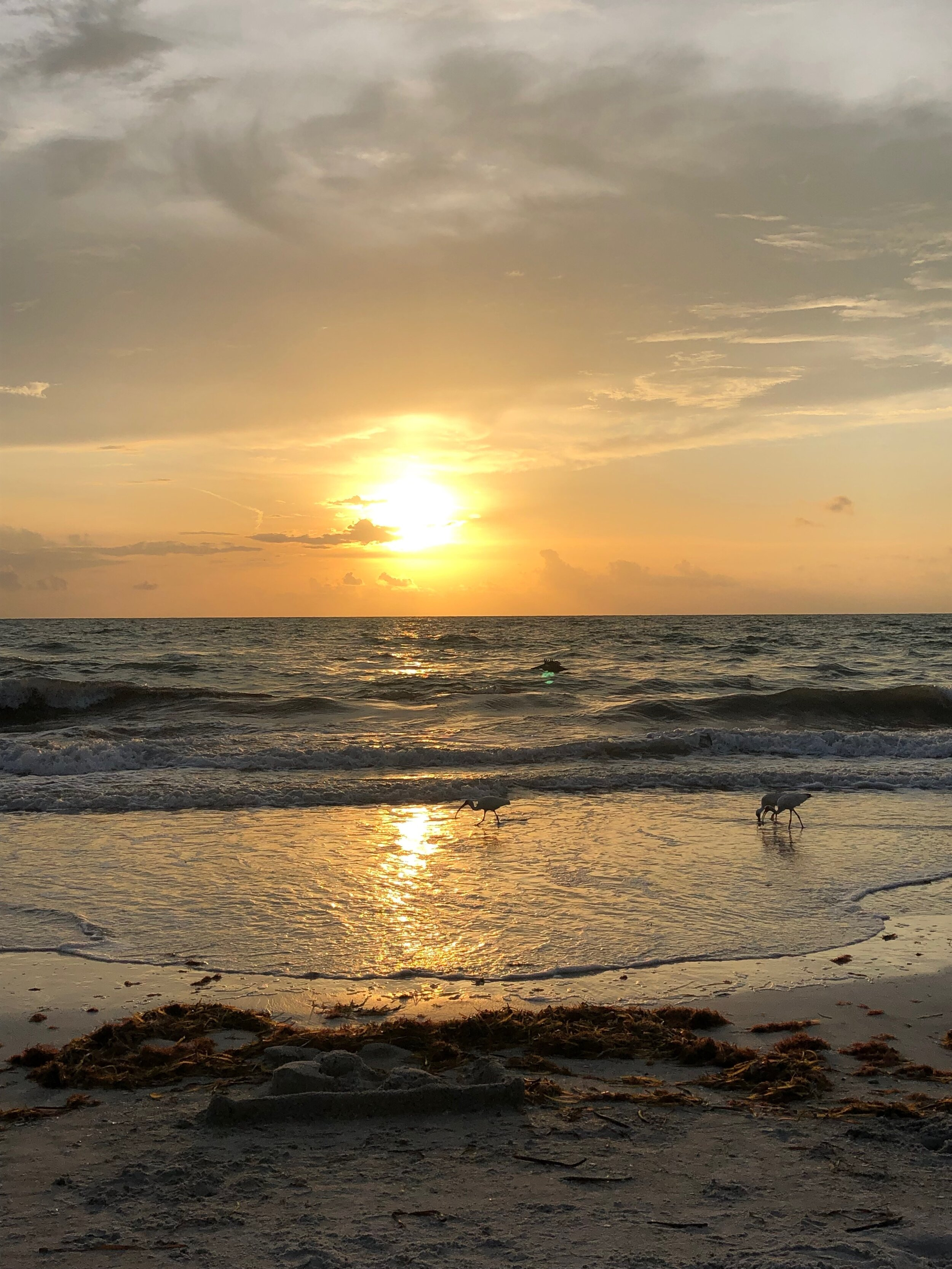 Sunset in Clearwater, Florida