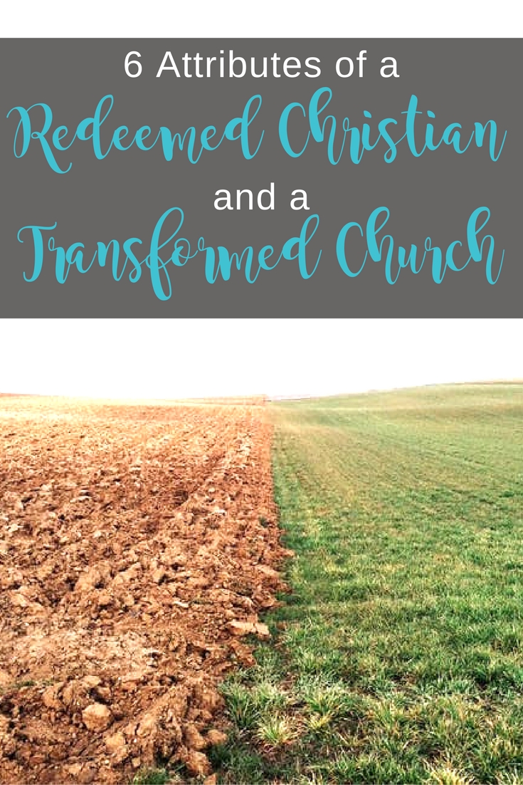 Check out this study on Colossians 3 and find out what a redeemed Christian life looks like and how it impacts the Church | Scripture Confident Living