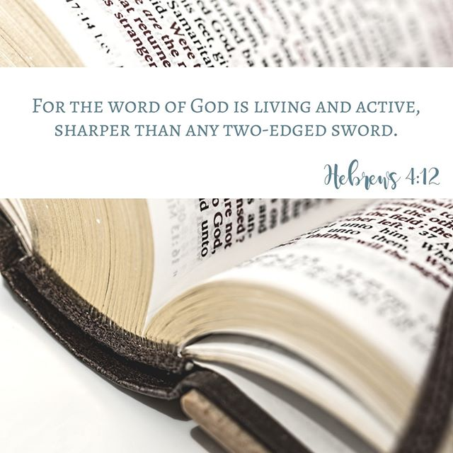 Your Word, oh Lord, is refreshing to our souls and equips us to know and follow you! . . . . . #bibletime #quiettime #devotionals #biblegram #womenoftheword #readyourbible #godsword #bible #biblestudy #putgodfirst #trustgod #faith #biblescriptures #dailydevotional #womenlivingwell #onlinebiblestudy #womenofgod #womenoffaith #christianwoman #ministrylife #shereadstruth #christianblogger #documentedfaith #butfirstjesus #intheword #walkinfaith #scriptureconfident